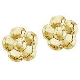 14K Yellow Gold Baby Flower Screwback Earrings